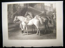 After John Frederick Herring C860 Steel Engraving, The Queens Horses